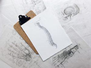 脊椎毛病知多少?