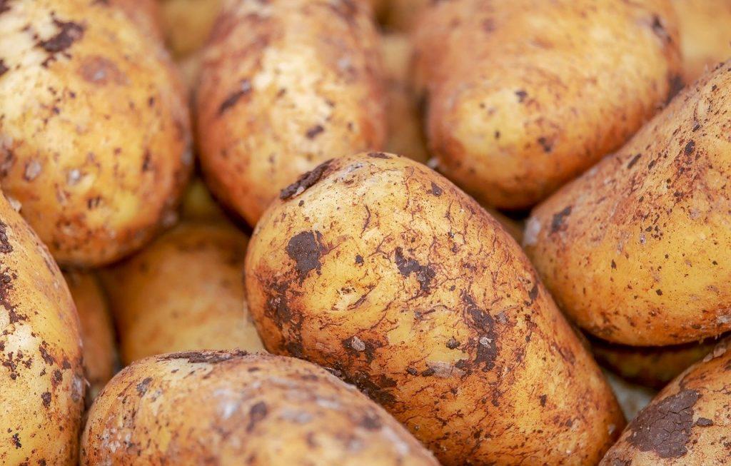 馬鈴薯、地瓜、芋頭,哪個比較好?